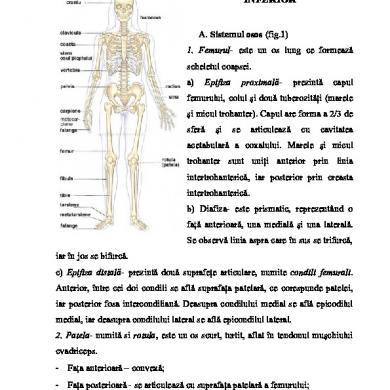 probleme de erectie medic Dimensiunea penisului Manuel Ferrara