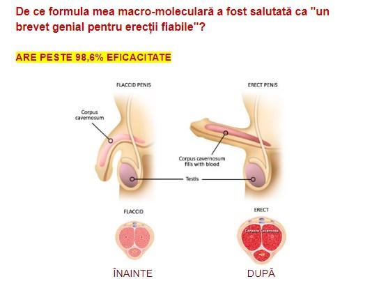 masaj refacerea erecției