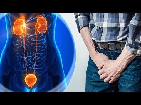 prostatită și disfuncție erectilă câți cm crește penisul cu excitare