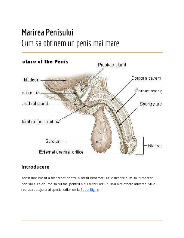 are un penis, dar nu pentru mult timp în ce constă penisul