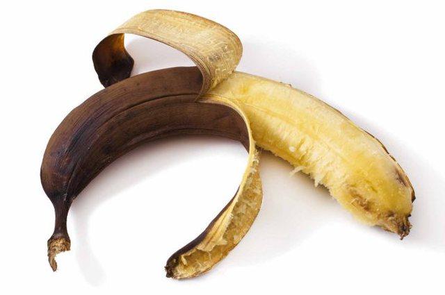 care este penisul muschinei