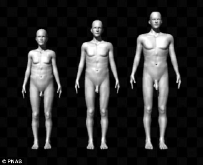 ce dimensiune pentru penisul femeilor pentru a face penisul mai mare