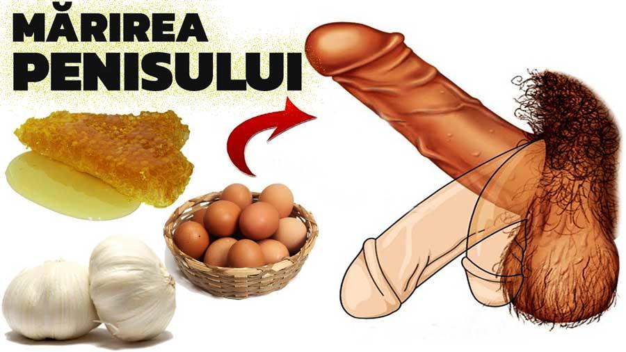 în timpul unei erecții, penisul cade
