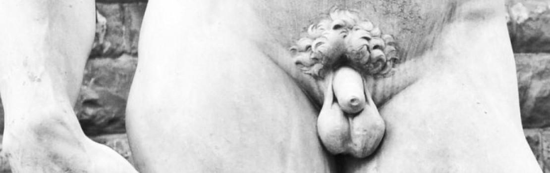 totul despre menet și penis erecția este rapidă apoi lungă