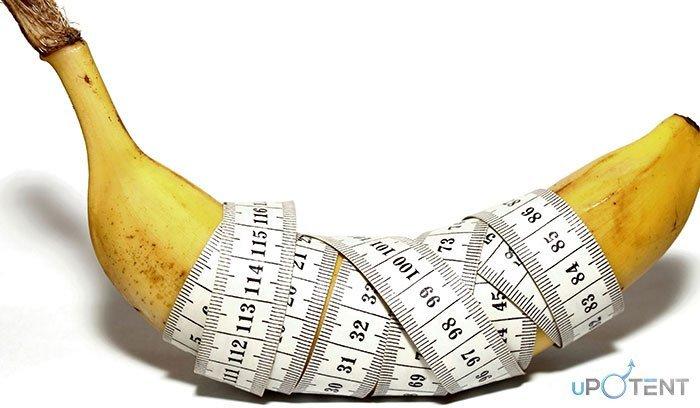 mărirea instantanee a penisului ce alimente ridică o erecție