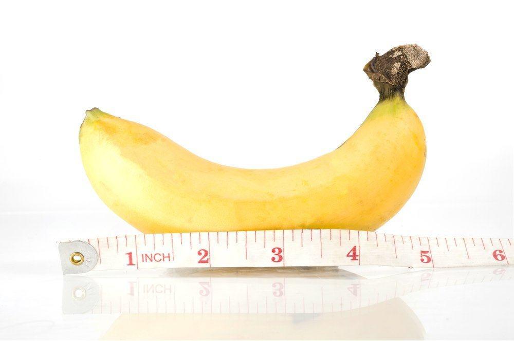dimensiunea medie a penisului în erecții